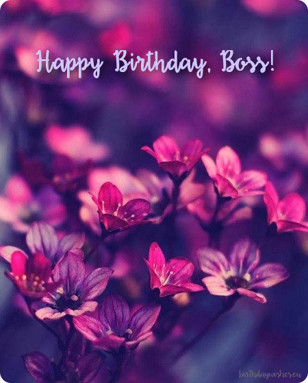 Birthday Wishes For Lady Boss Card